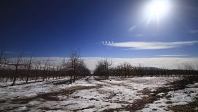 Time lapse in the snow 1. Time lapse video The movement of the clouds  in the snow. The Golan Heights Mount Hermon Israel stock footage