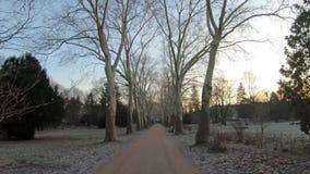 Time Lapse spaceru park W Berlin Publicznie, Niemcy W zimie Przy świtem zbiory