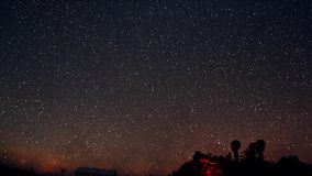 A time lapse of a starry night with a shadow of a tree in foreground and with a star trail effect stock video