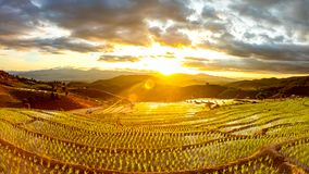 Time lapse, sunset over the rice fields stock video footage