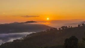 Time lapse of 101 tea plantation at Doi Mae Salong it is a popular tourist destination of Chiang Rai Thailand.