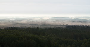 Time lapse of thick fog flowing over a forest covered valley stock footage