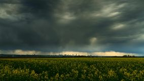 Time lapse - Thunderstorm over a canola field stock video