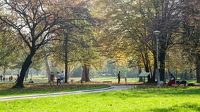 Time lapse of topcider park in sunny autumn afternoon stock video