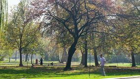 Time lapse of topcider park in sunny autumn afternoon. Smooth pan. Belgrade Serbia stock video