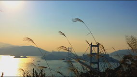 Time lapse of Tsing Ma Bridge at Summer in Hong Kong. stock footage
