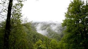 Time Lapse van Onderstel Perevalnaya Krasnaya Polayna na de regen vanuit gezichtspunt op bergcluster stock videobeelden