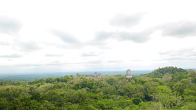 Time Lapse Video of Clouds over the Tikals National Park. Multiple temples of Mayan died out city stretching over the top of the trees stock video