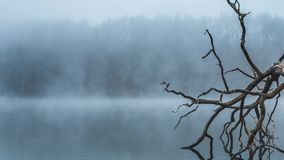 Early morning fog and mist above a quiet lake in Lithuania. Time lapse vodeo of Early morning fog and mist above a quiet lake in Lithuania stock footage