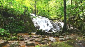 Time Lapse of Waterfall in deep forest Royalty Free Stock Photo