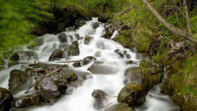 Time lapse waterfall with lush green foliage stock video footage