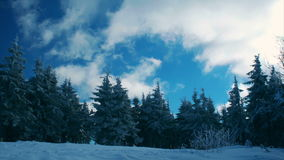 Time-lapse of white clouds passing by in blue sky over winter forest. Timelapse of white clouds passing by in blue sky over winter forest stock video