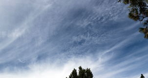 Time Lapse Wispy Clouds In Blue Sky Tree Branches 4K stock video footage
