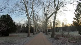 Time Lapsegang in Openbaar Park in Berlijn, Duitsland in de Winter in Dawn stock footage