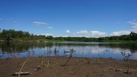 Time lapsezand, water, bos en de hemel stock videobeelden