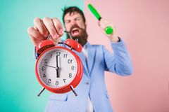 Time management and discipline. Discipline and sanctions. Boss aggressive face hold alarm clock. Destroy or turn off. Man suit hold clock and baseball bat in royalty free stock images