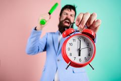 Time management and discipline. Discipline and sanctions. Boss aggressive face hold alarm clock. Destroy or turn off. Man suit hold clock and baseball bat in royalty free stock photos