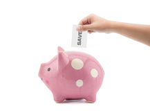 Time and money - hand putting a save into a pink piggy bank Royalty Free Stock Image