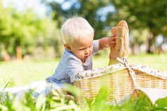 Little child trying to find something tasty in the basket. Time on nature. Little cute child trying to find something tasty in the basket while spending time on stock images