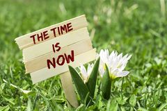 The time is now sign. The time is now on wooden sign in garden with spring flower stock photos