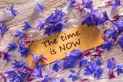 The time is NOW. In looking memo on white wood with beautiful blue flowers around Stock Photo