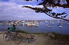 Time out. A cyclist takes time out to enjoy the breathtaking view of Monterey Bay royalty free stock photos