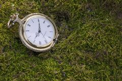 Time passes and measures life. Life passes, everyone`s time sets Royalty Free Stock Photo