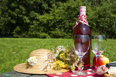 Time for a picknick Royalty Free Stock Image