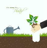 It is time for planting.Farmer planting in the ground with green Royalty Free Stock Photos