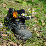Time of relaxation. Tourist boot with meadow flowers standing on the grass Stock Images