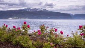 Time-schackningsperiod sikt på Vangsnes i Norge stock video