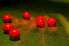 Time for Snooker. A long exposure shot of a pyramid of snooker balls breaking at the start of a game Stock Photos