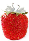 Time of strawberry. Stock Photography