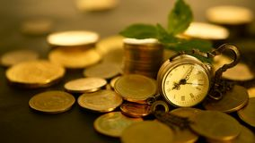 Time for success of finance business. Investment, business financial ideas concept. Management efficiency, time is money. Management efficiency, time is money stock video