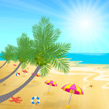 Time summer enjoy with coconuts on the beach and sunshine Royalty Free Stock Images