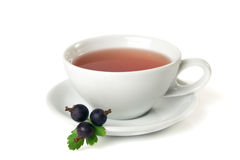 Time for tea. Cup of tea isolated on white background Stock Photos