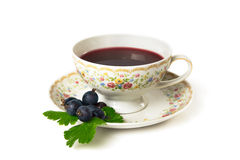 Time for tea. Cup of tea  on white background Stock Images