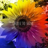 Time to be happy and positive, a colourful sunflower photographed in Bloemfontein, South Africa