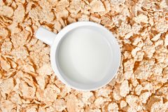 Time to breakfast with milk and corn flakes Stock Image