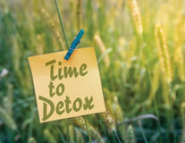 Time to Detox. Recovery concept on sticky note and green grass background Stock Photos