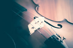 Time to practice violin Stock Photography