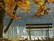 Time to rest. Bench on a river bank under a tree in Autumn Royalty Free Stock Photos