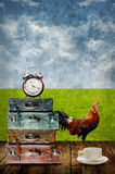 Time to rest concept, Drink coffee beside field Royalty Free Stock Photos