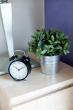 Time and tree on table Royalty Free Stock Photography