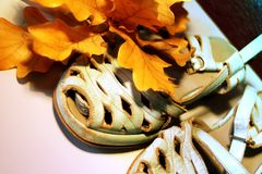 Close up on old sandals in pale pastel blue and autumn colored leaves stock image