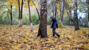 The time of year, Autumn. Children playing in the nature. The time of year, Autumn. Children playing outdoors. Children playing with autumn leaves. Boys throw stock video