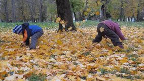 The time of year, Autumn. Children playing in the nature stock footage