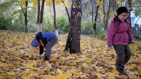 The time of year, autumn. Children playing in the nature. The time of year, autumn. Children playing outdoors. Children playing with autumn leaves. Boys throw stock video footage