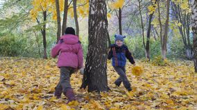 The time of year, Autumn. Children playing in the nature stock video footage