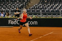 Timea Bacsinszky utbildning på Fed Cup Rumänien 2018 arkivbilder